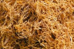 Măng rối khô Dũng Hà Địa chỉ cung cấp măng rối sạch tại Hà Nội