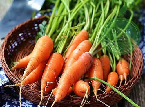 giá bán cà rốt