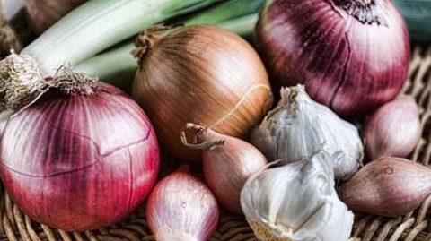Thành phần dinh dưỡng hành tây tím và hành tây trắng loại nào tốt hơn