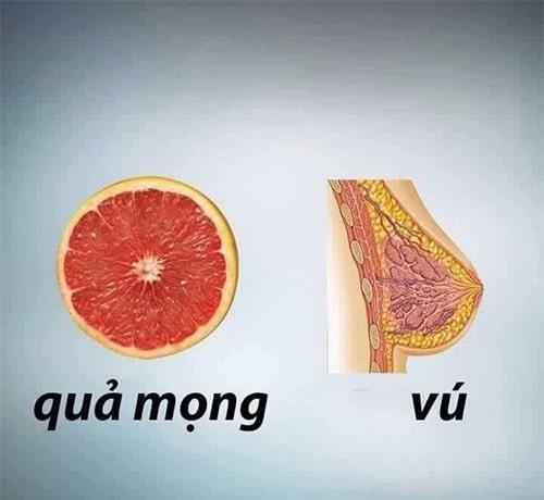 Trái cây, quả mọng tốt cho vú