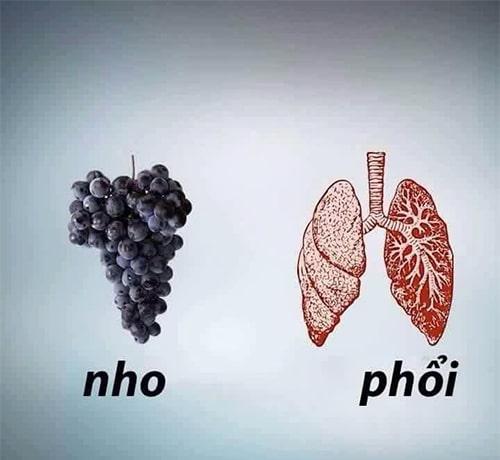 Nho tốt cho phổi