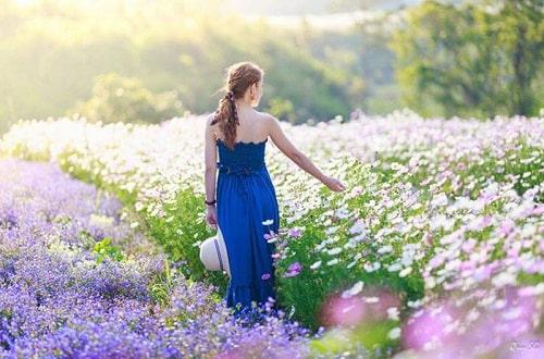 Du lịch vườn hoa gần gũi với thiên nhiên