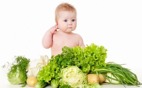 Rau củ là nguồn dinh dưỡng quan trọng