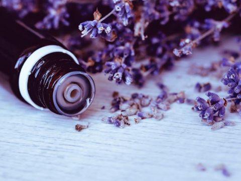 Lợi ích đến sức khỏe của tinh dầu oải hương.